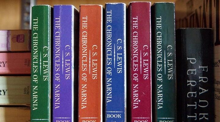 Lewis bookshelf
